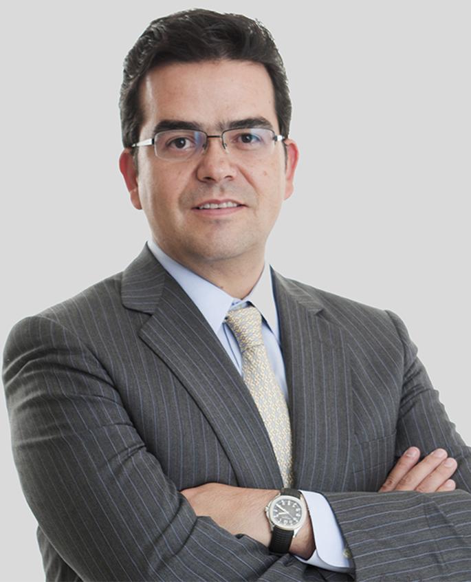 Bernardo_web