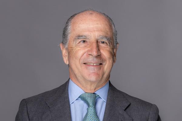 Ramón de Miguel Egea